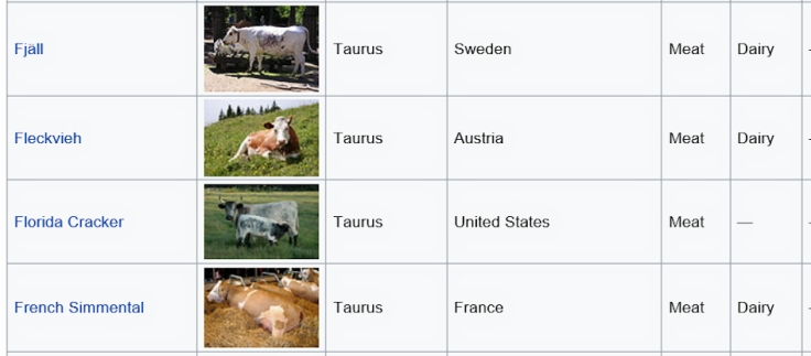 wikipedia cattle index - to identify cows and bulls