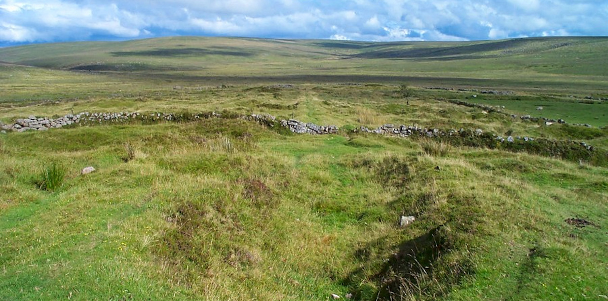 Open moorland where aggressive cattle roam freely