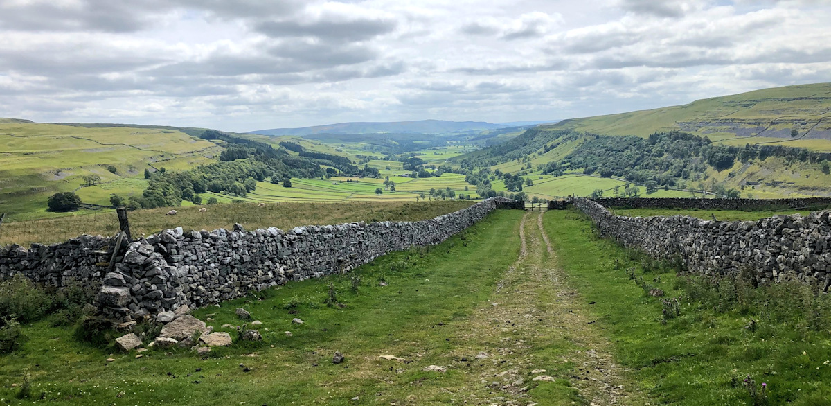 The confined bridle path in the yorkshire dales where the bull attack happened
